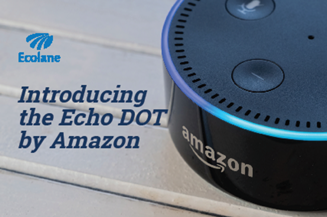 Echo DOT cover