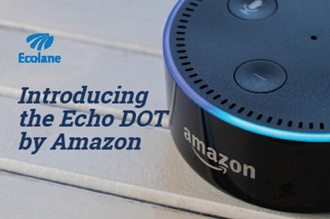 Echo DOT cover