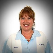 Susan Starwalt, Business Development Director and Expert in Public Transport Industry