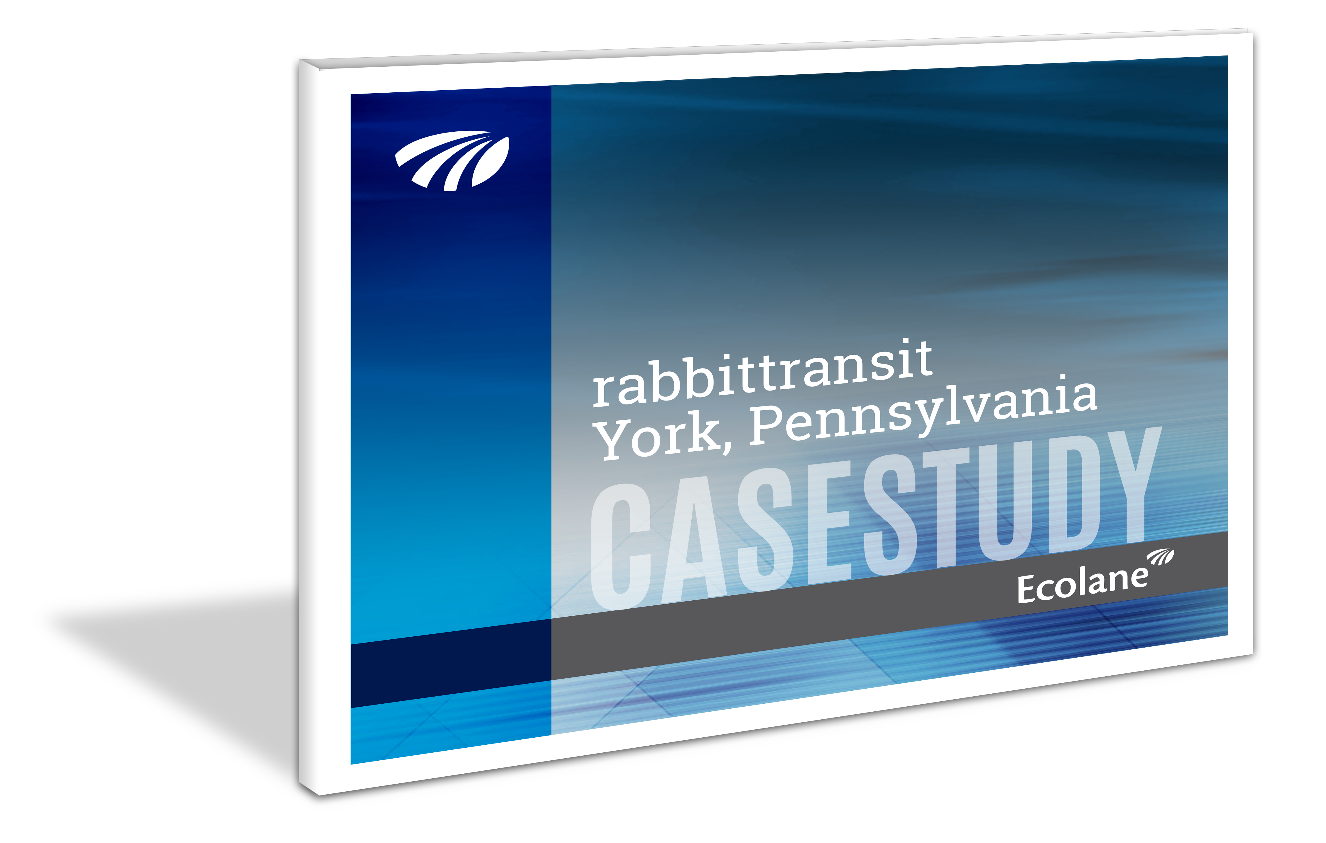 rabbittransit case study